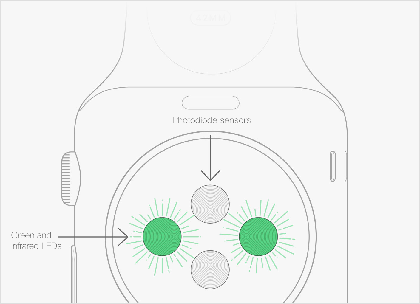 sensor óptico Apple Watch