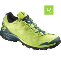 Zapatilla de running Salomon Out Path GTX