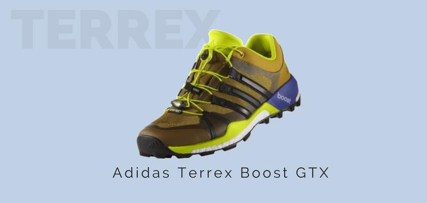 Adidas Terrex: la gama de zapatillas trail de la marca alemana, Adidas Terrex Boost GTX