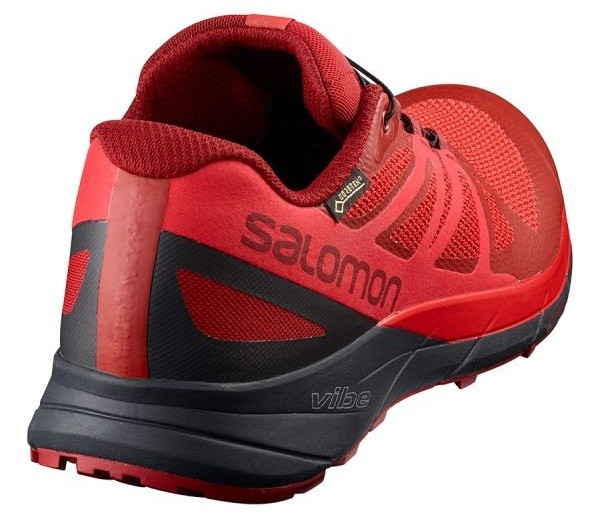 salomon sense ride gtx detalles