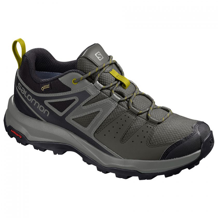 Salomon X Radiant GTX color gris