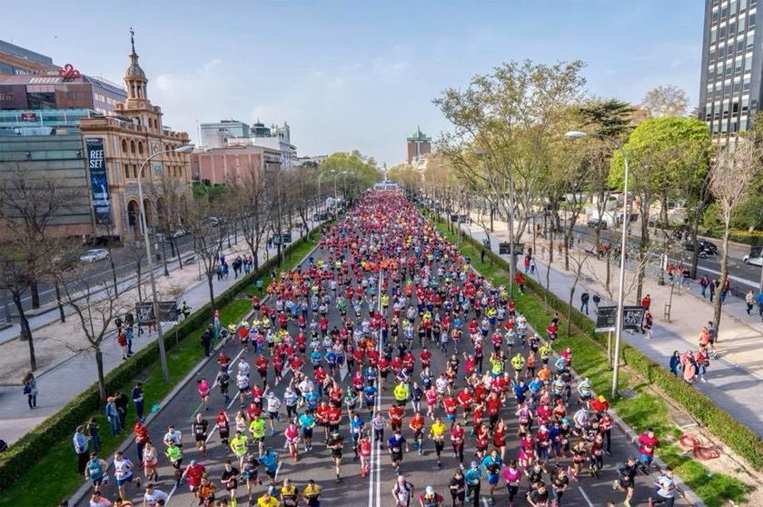 Adidas Ultra Boost 19 o Adidas Adizero Adios ¿Qué zapatilla de running elegirás para correr el Maratón de Madrid 2019?: camiseta - foto 5