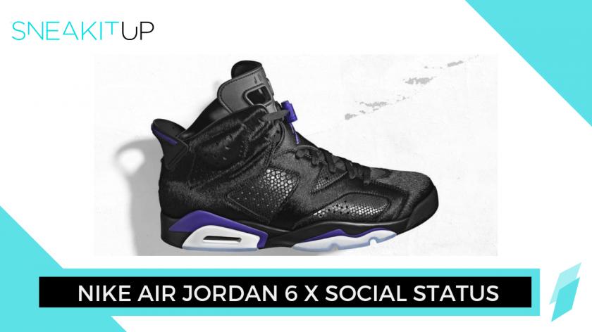 Nike Air Jordan 6 x Social Status
