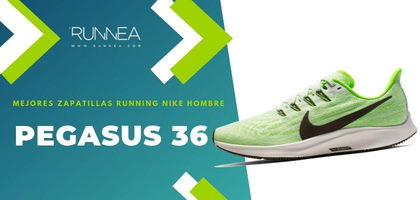 Verter Emborracharse Residente  10 mejores zapatillas running hombre Nike 2010
