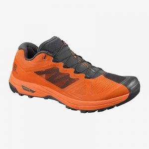 Zapatilla de running Salomon X Alpine Pro