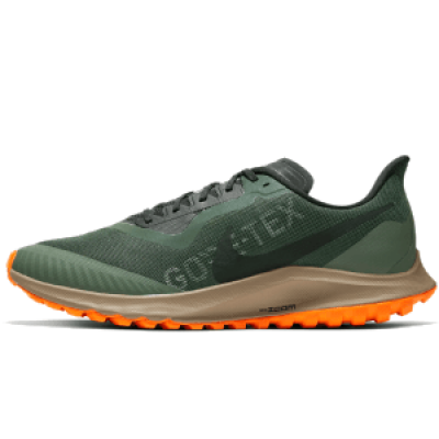 chaussures de running Nike Zoom Pegasus 36 Trail GORE-TEX