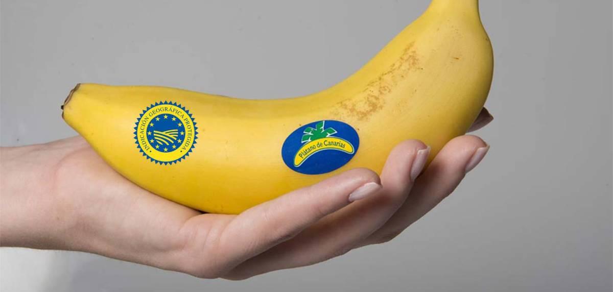 El plátano de Canarias, el mejor alimento para comer antes y después de un entrenamiento, salud