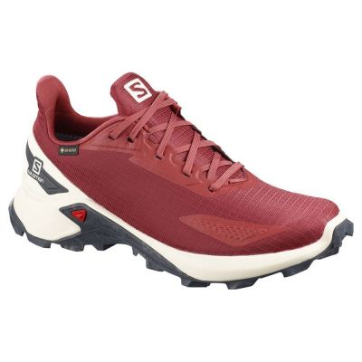 Salomon Alphacross Blast Goretex