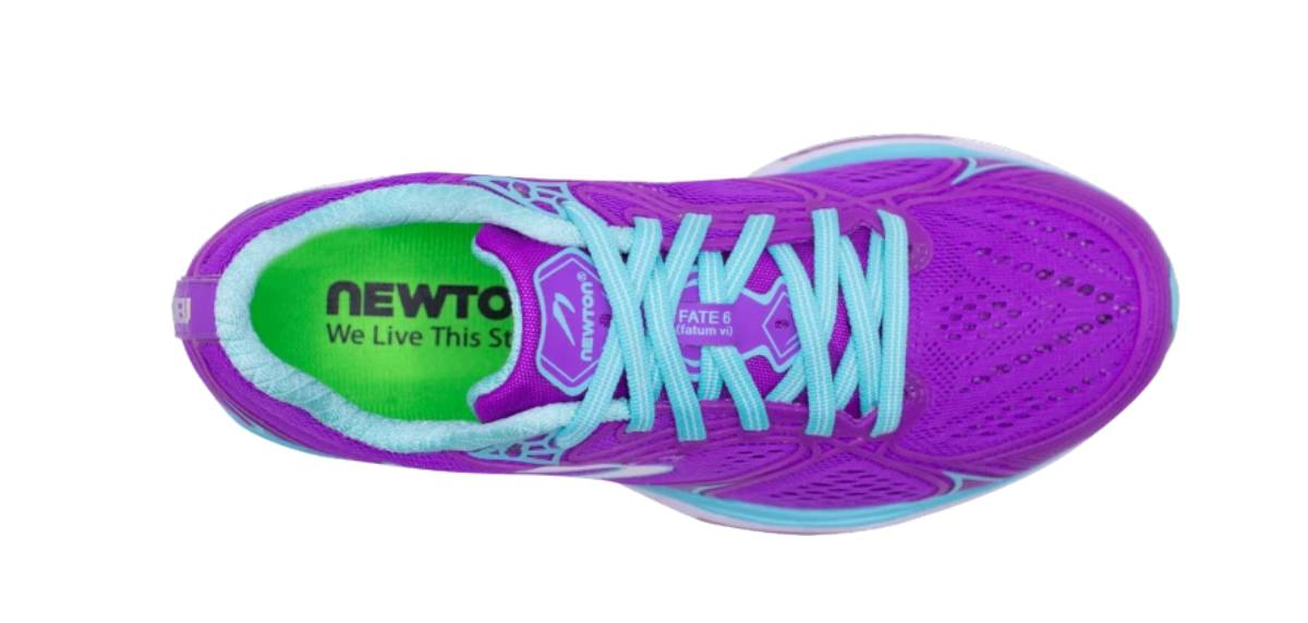 Newton Fate 6, upper