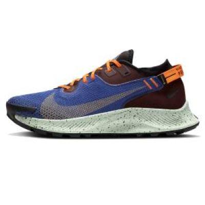 Zapatilla de running Nike Pegasus Trail 2 GORE-TEX