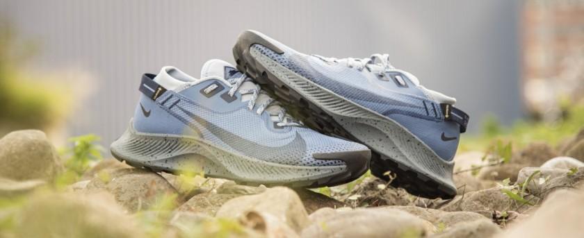 Nike Pegasus Trail v2 Gore-Tex