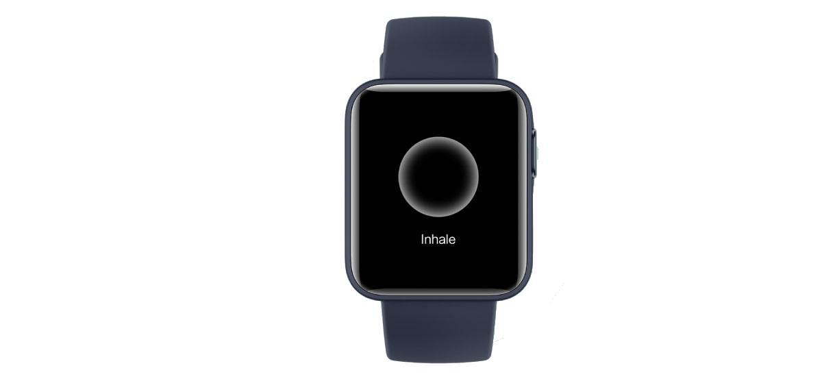 Xiaomi Redmi Watch, especificaciones técnicas