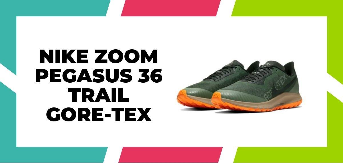 Meilleures chaussures de course mixtes pour combiner trail et route en 2021, Nike Zoom Pegasus 36 Trail GORE-TEX