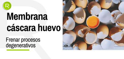 Membrana de cáscara de huevo para frenar los procesos degenerativos de las articulaciones